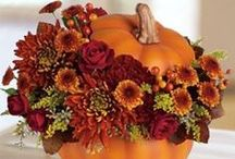 Decorating for FALL / by Diane Blair