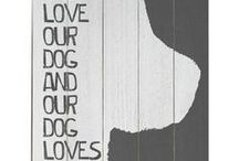 Four-legged family / Dogs are family.  Integration into our lives is made easier through design.