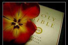 Bible Study / by Angela Gant