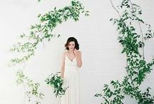 Eco Friendly San Fransico Wedding Photographer | Green Wedding Ideas / by Jeannie Guzis