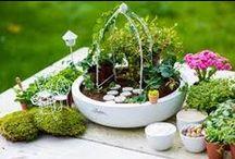 """KIXX ♥ (G)Loves mini tuinieren """"To Impress"""" / Tuinieren jullie al binnen?  De nieuwste trend is overgewaaid uit  Amerika en Engeland: Fairy gardens. Mini tuintjes op een schaal of in een pot. Bij tuincentra zagen wij originele accessoires voor het maken van jouw droomtuintje. / by KIXX Safety"""