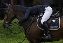 Hevoset ja ratsastus / Horses and riding