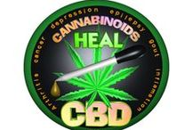 Medical cannabis/ marijuana by Valxart /  Valxart's medical cannabis designs are customizable for labels, buttons, shirts, posters, hats, key chains, cards & more. Modify templates at http://pinterest.com/valxart/medical-cannabis-by-valxart/ or Valxart can create customize designs at no cost so that medical cannabis industry always looks its best. Contact info@valx.us for assistance or see more at http://zazzle.com/valxartmedicalpot* / by Valx Art