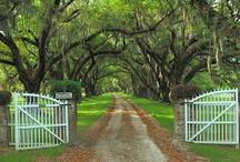 It's a Southern thang............