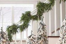 Holidays / by Jenine Lilly