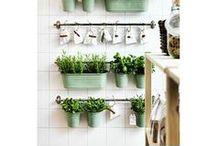For the Home: Ikea Inspiration & DIY