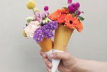 Floral Fun / by Kelli Doolittle