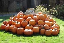 Autumn at Blantyre