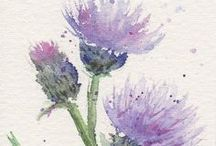 WATERCOLORS / by Carolyn Avellone