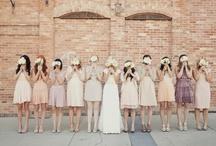 Wedding Photography / by Rachel Sibley