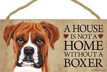 We love our Boxer !!!!! / Bruno