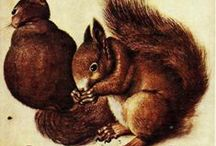 Creature Comforts / The animals I love: squirrels, foxes, mouse, bears and more.