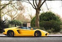 Lamborghini Aventador / by Adam Lang