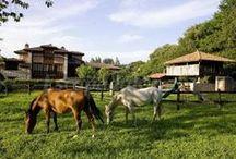 """Casas rurales en Asturias / Se dice que el Principado de Asturias es un """"paraíso natural"""" y con mucha razón. El viajero tiene ante sí uno de los paisajes más hermosos de toda la Península en cualquier lugar de su extenso territorio, desde Galicia hasta Cantabria. No en vano es la comunidad donde se concentran más casas rurales de toda España rodeadas de naturaleza y tradiciones."""