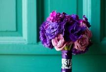 Our weddings: Classic Ideas