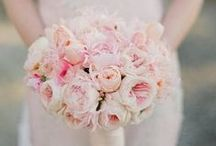 Blush Bridal Bouquets / Blush and pastel coloured bridal bouqets for all styles of brides