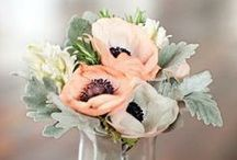 {Crafts} Floral Beauties / by Lindsey Brogdon