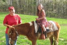 Santa's Stables / Visit Santa's Stables for a family-friendly horseback riding experience. Led by skilled horseback guides, the wooded surroundings provide a perfect environment with multiple quaint trails.