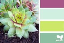 inspired • color / The colors I want to be surrounded in. / by McKenzie {Girl Loves Glam}