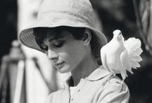 Audrey Hepburn / The classiest act in Hollywood. Ever. There'll never be another one like her.