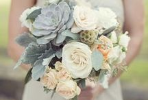 Bouquets + Beautiful Flowers / Ideas for my bouquet + other floral needs