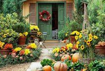 Autumn Awesomeness