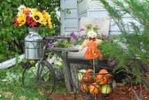 Autumn / by Trish Whelan
