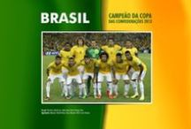 Confederations Cup 2013 in Brazil. / Brazil is champion Confederations Cup 2013