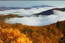 Autumn - Automne - Hösten - Herbst - Fall - Otono -  Осенние / The Season of Colours _Visit also :  https://www.pinterest.com/HBlackthorne/autumn-automne-h%C3%B6sten-herbst-fall-otono/