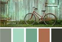 Color / by Vicki Fort