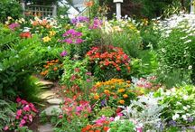 Gardening-Flowers and Landscapes / by Victoria Hamilton