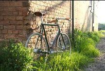 Bicycles / Beautiful bicycles