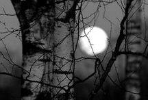 Dark Side-Dark Beauty-Just Dark
