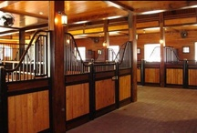 European Series Horse Stalls / Classic styling and elegance is the essence of the European Series horse stalls from Classic Equine Equipment. Sweeping curves, heavy-duty welded construction, and attention to detail are a few of the traits that set our horse stalls apart from the competition.
