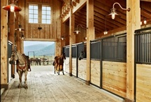 Legend Series Horse Stalls / Made from premium, heavy-duty galvanized steel, this solid framed horse stall system can be made in any length. The Legend Series is designed as a one piece, fully framed stall front.