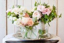 Flowers / Flowers and flower arrangements. / by Darlene Schacht (TimeWarpWife.com)