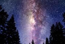 ***star gazer*** / by Apryl Bee