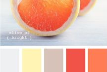Color Schemes / by Charlotte Zinn