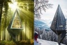 Amazing Tree Houses / by Kate Purdy 6 Degrees Photography