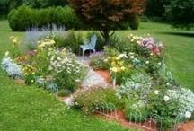 Garden/Flower Beds / by Amber Rusch