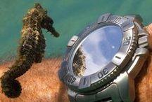Underwater Time