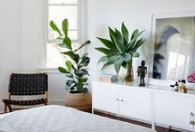 Main Bedroom / Inspiration for the main bedroom