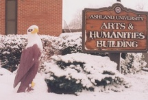 "Eagles  / Tuffy might be ""one of a kind"" but the powerfully built birds of prey represent the power and strength Ashland students have! / by Ashland University"