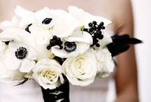 Black White and Red Wedding / by Teacup Floral