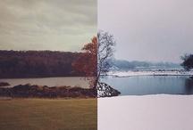 Still Life / photography