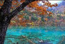 tourquoise color / by Kate Davis