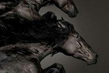 black swan / stalwart guardian, adversary, challenger