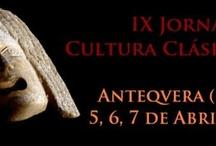 Anticaria MMXIII