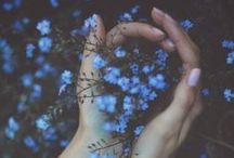 desire: wild / earthy. green. plants + trees. nature. home. adventure.