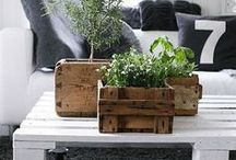 DIY palets / DIY ideas with palets, for the home